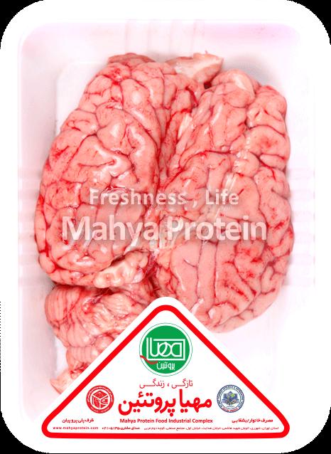 مغز گوساله
