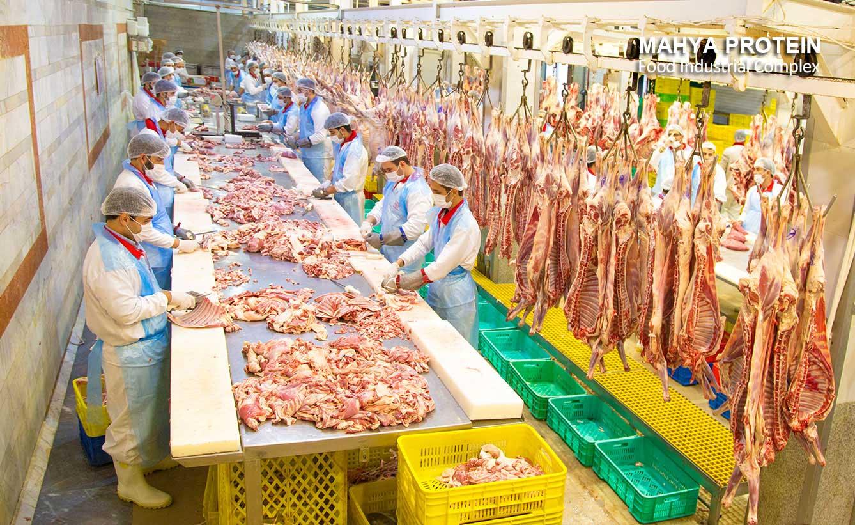 سالن گوشت