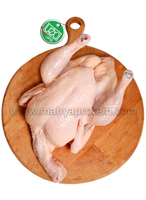 مرغ کامل 2